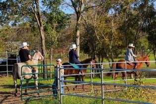 An-afternoon-trail-ride-at-Texas-Horse-Park